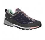 Chaussures MTN Trainer GTX - Salewa