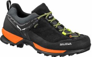 Exemple de chaussure basse: Mtn Trainer gtx - Salewa