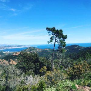 Trail des Balcons d'Azur - prépa UTMB