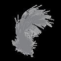 sac de couchage plume